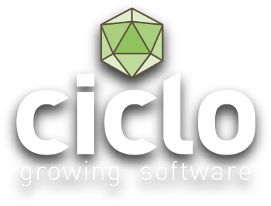 Ciclo Software